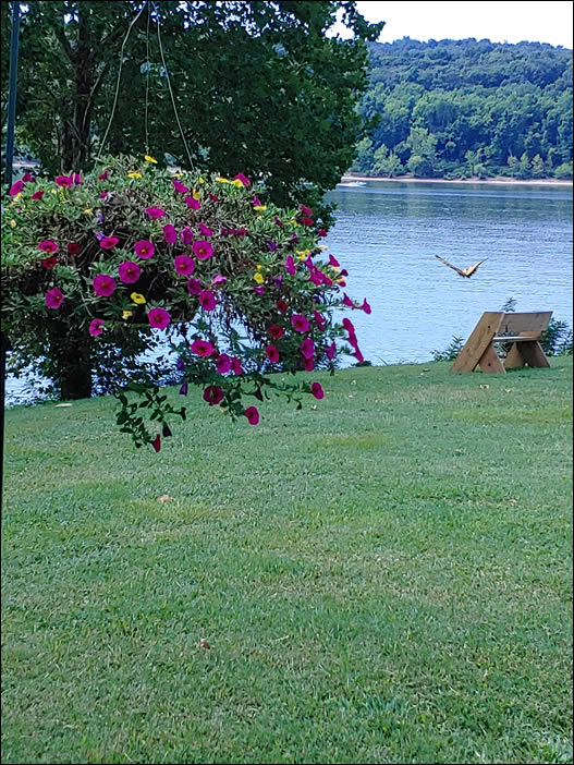 Beauty abounds on the Ohio River